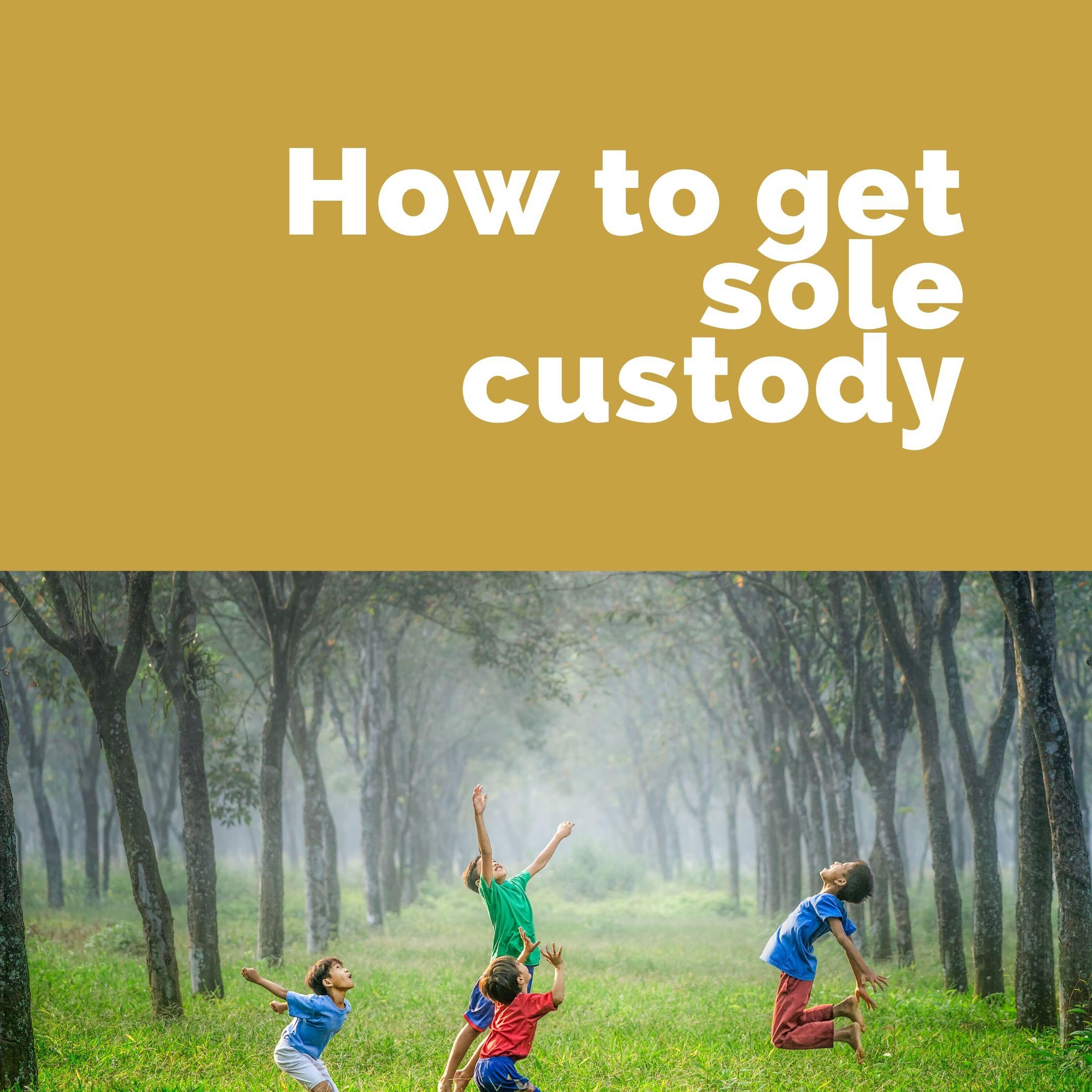 How Do You Get Sole Custody?
